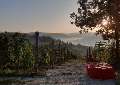 BORGO MARAGLIANO, Piemonte
