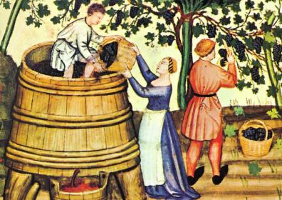 La storia del vino in Toscana