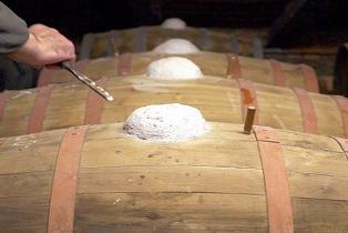 Il Vin Santo di Toscana ….