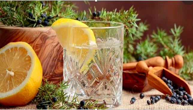 Si fa presto a dire Gin, ma lo sai quante tipologie di ginepro esistono in natura???